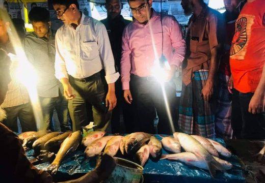 বালাগঞ্জে নিষিদ্ধ জাটকা মাছ বিক্রির দায়ে দুজনকে এক হাজার টাকা জরিমানা