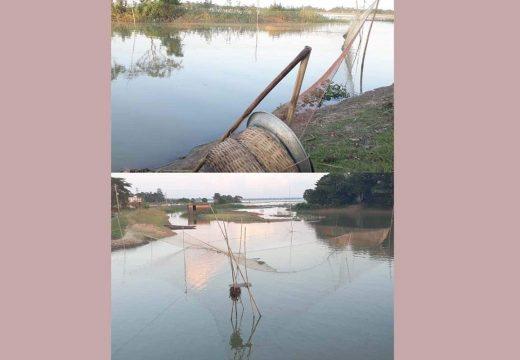 বালাগঞ্জের নদীতে মৎস্য নিধনে স্থানে স্থানে 'মরণ ফাঁদ'