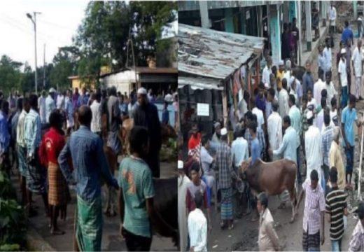 গহরপুরে স্বাস্থ্যবিধি না মেনেই চলছে গবাদিপশুর হাট : উপজেলা জুড়ে সংক্রমণের আশঙ্কা