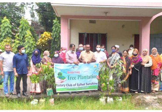 মাসব্যাপী বৃক্ষরোপণ করবে রোটারি ক্লাব সিলেট সানসাইন